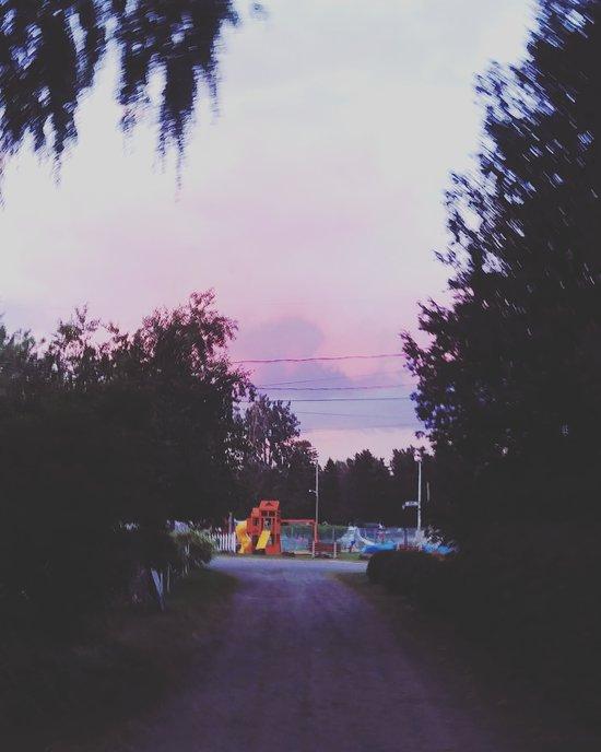 roulotte camping canne de bois