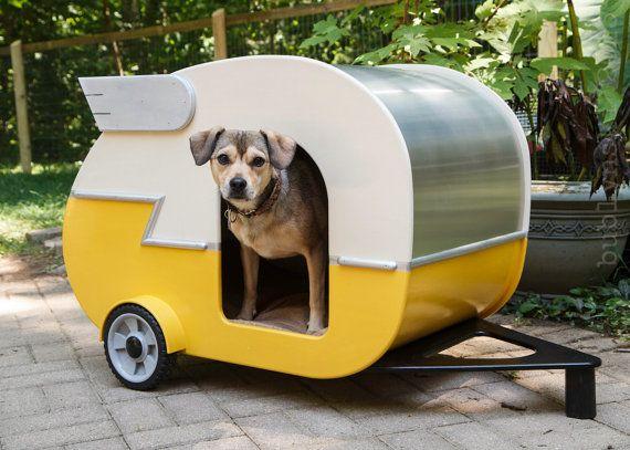 roulotte pour chien